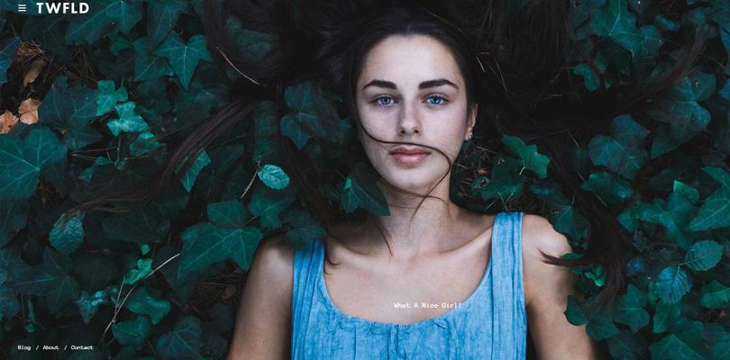 twofold-szablon-wordpress-dla-fotografow